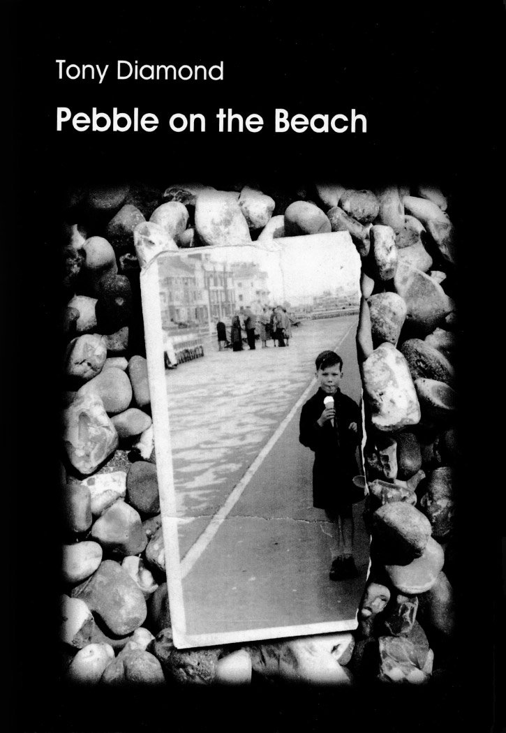 Pebble on the Beach QueenSpark books